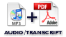 MP3 Audio Plus Full Transcript Workbook